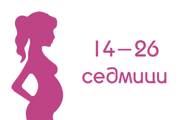 Втори триместър от бременността
