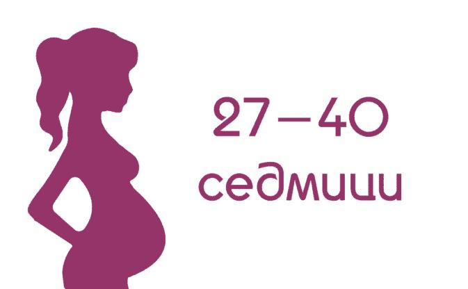 Трети триместър от бременността