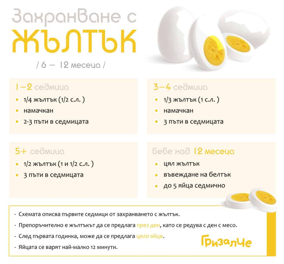 Захранване с жълтък, Въвеждане на жълтък на бебе, схема на захранване