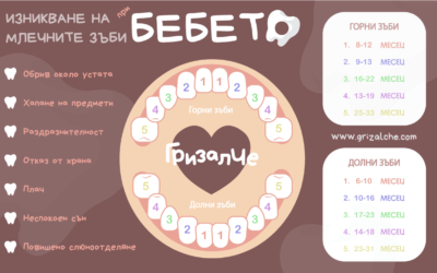 Млечни зъби – никнене, симптоми и брой