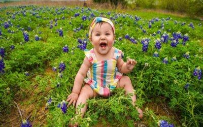 Цветница – имена на цветя